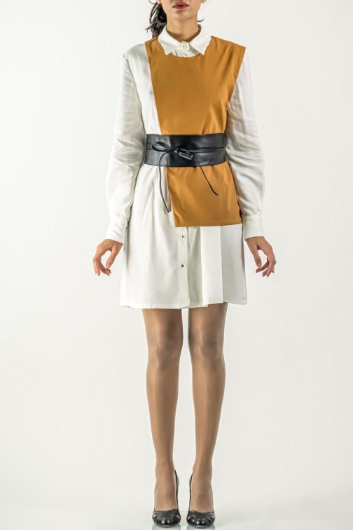 Robe Plover